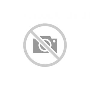 Datalogger / Intemp Bluetooth Temperatura ed umidità CX450